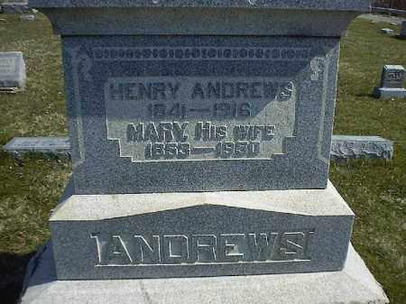 ANDREWS, HENRY - Brown County, Ohio | HENRY ANDREWS - Ohio Gravestone Photos