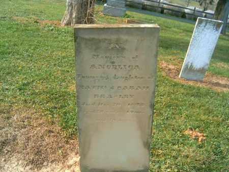 BEASLEY, ANGELICA - Brown County, Ohio | ANGELICA BEASLEY - Ohio Gravestone Photos