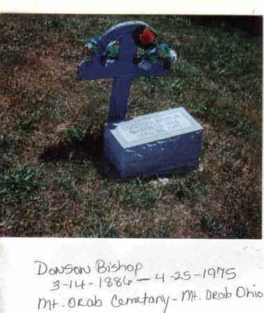 BISHOP, DONSON - Brown County, Ohio   DONSON BISHOP - Ohio Gravestone Photos
