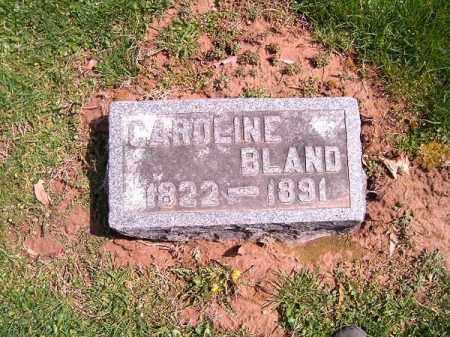 BLAND, CAROLINE - Brown County, Ohio   CAROLINE BLAND - Ohio Gravestone Photos