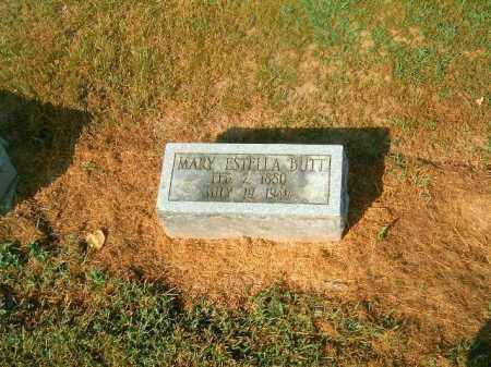 BUTT, MARY  ESTELLA - Brown County, Ohio | MARY  ESTELLA BUTT - Ohio Gravestone Photos