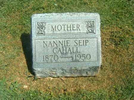 CAHALL, NANNIE - Brown County, Ohio | NANNIE CAHALL - Ohio Gravestone Photos