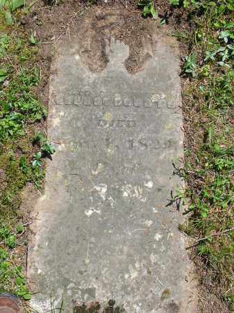 COURTS, GEORGE - Brown County, Ohio | GEORGE COURTS - Ohio Gravestone Photos
