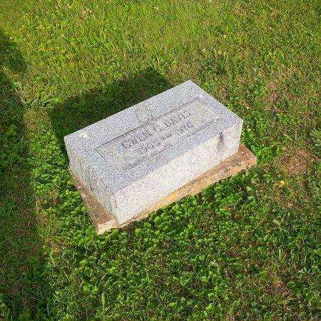 DAVIS, GWEN - Brown County, Ohio | GWEN DAVIS - Ohio Gravestone Photos
