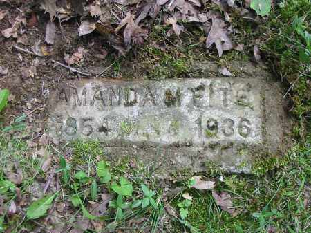 FITE, AMANDA M - Brown County, Ohio | AMANDA M FITE - Ohio Gravestone Photos