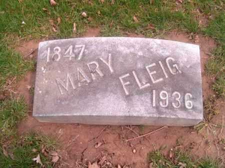 FLEIG, MARY - Brown County, Ohio | MARY FLEIG - Ohio Gravestone Photos
