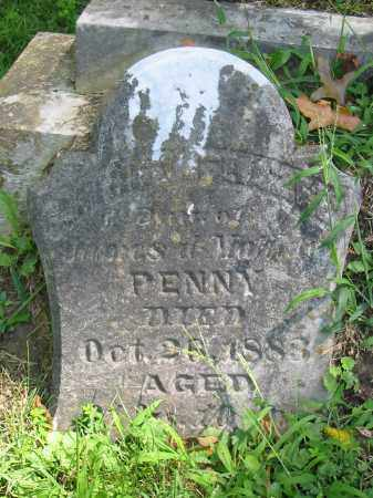 PENNY FRAZEE, ANNIE V - Brown County, Ohio | ANNIE V PENNY FRAZEE - Ohio Gravestone Photos