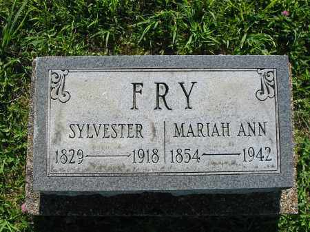 FRY, SYLVESTER - Brown County, Ohio | SYLVESTER FRY - Ohio Gravestone Photos