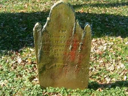 HATMAN, LIBS - Brown County, Ohio | LIBS HATMAN - Ohio Gravestone Photos