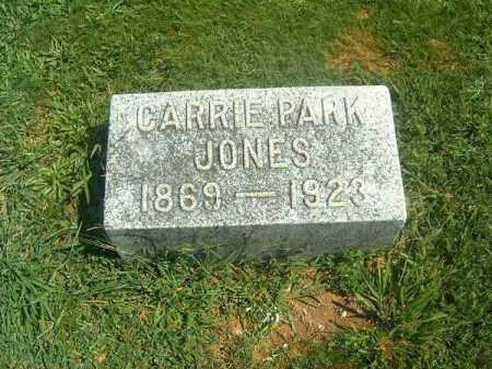 JONES, CARRIE - Brown County, Ohio | CARRIE JONES - Ohio Gravestone Photos