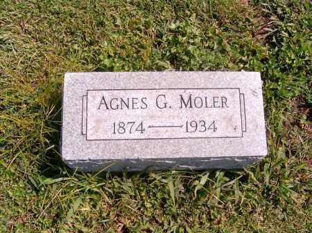 MOLER, AGNES  G - Brown County, Ohio | AGNES  G MOLER - Ohio Gravestone Photos