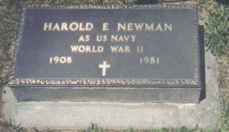 NEWMAN, HAROLD E. - Brown County, Ohio | HAROLD E. NEWMAN - Ohio Gravestone Photos