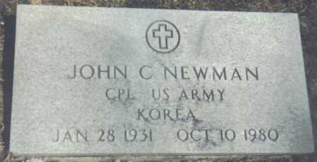 NEWMAN, JOHN C. - Brown County, Ohio | JOHN C. NEWMAN - Ohio Gravestone Photos