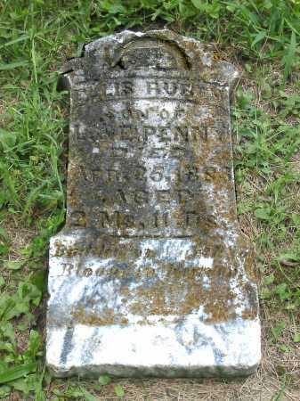PENNY, ELLIS RUBEN - Brown County, Ohio | ELLIS RUBEN PENNY - Ohio Gravestone Photos