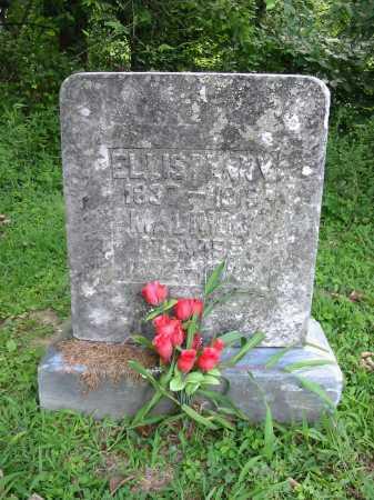 PENNY, ELLIS - Brown County, Ohio | ELLIS PENNY - Ohio Gravestone Photos