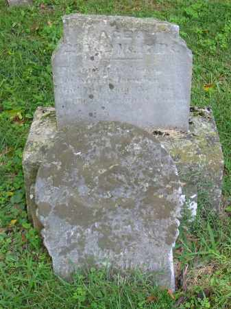 PENNY, HENRY M - Brown County, Ohio | HENRY M PENNY - Ohio Gravestone Photos