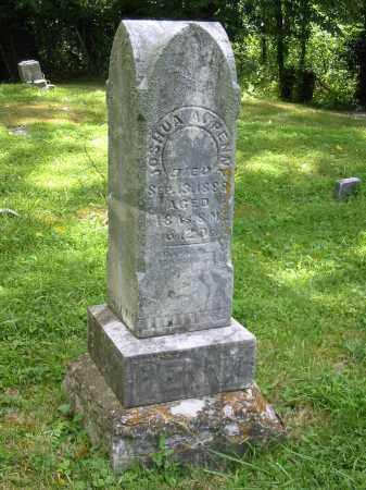 PENNY, JOSHUA A - Brown County, Ohio | JOSHUA A PENNY - Ohio Gravestone Photos