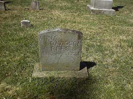 DAVIDSON REES, ANNA - Brown County, Ohio | ANNA DAVIDSON REES - Ohio Gravestone Photos