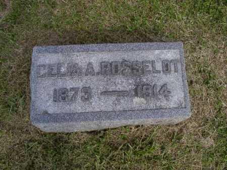 ROSSELOT, CELIA ANN - Brown County, Ohio | CELIA ANN ROSSELOT - Ohio Gravestone Photos