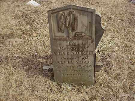 SHAW, ELIZABETH - Brown County, Ohio | ELIZABETH SHAW - Ohio Gravestone Photos