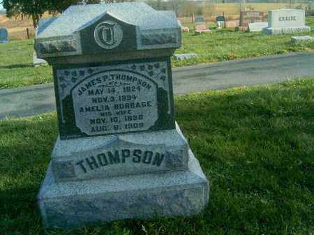 THOMPSON, JAMES  P - Brown County, Ohio | JAMES  P THOMPSON - Ohio Gravestone Photos