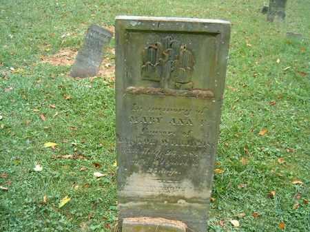 WILLIAMS, MARY ANN - Brown County, Ohio | MARY ANN WILLIAMS - Ohio Gravestone Photos