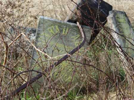 ABEL, CONRAD [VIEW 4] - Carroll County, Ohio | CONRAD [VIEW 4] ABEL - Ohio Gravestone Photos