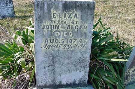ALGEO, ELIZA - Carroll County, Ohio | ELIZA ALGEO - Ohio Gravestone Photos