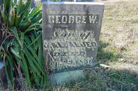 ALGEO, GEORGE W. - Carroll County, Ohio   GEORGE W. ALGEO - Ohio Gravestone Photos