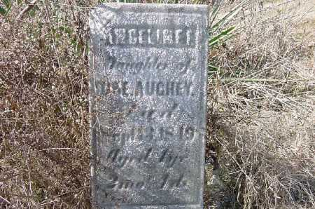 AUGHEY, ANGELINEA - Carroll County, Ohio | ANGELINEA AUGHEY - Ohio Gravestone Photos