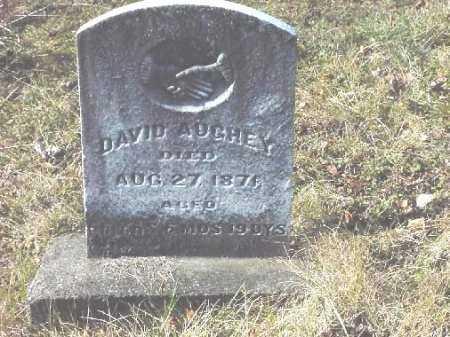 AUGHEY, DAVID - Carroll County, Ohio | DAVID AUGHEY - Ohio Gravestone Photos