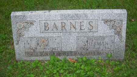 BARNES, SHERMAN - Carroll County, Ohio | SHERMAN BARNES - Ohio Gravestone Photos
