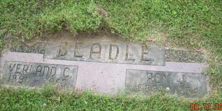 BEADLE, ROY J - Carroll County, Ohio | ROY J BEADLE - Ohio Gravestone Photos