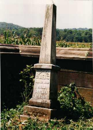 BEVER, LYDIA - Carroll County, Ohio   LYDIA BEVER - Ohio Gravestone Photos
