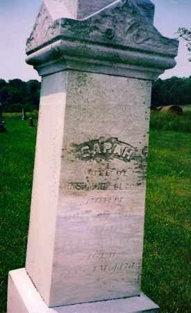DAVIS BLACK, SARAH - Carroll County, Ohio | SARAH DAVIS BLACK - Ohio Gravestone Photos