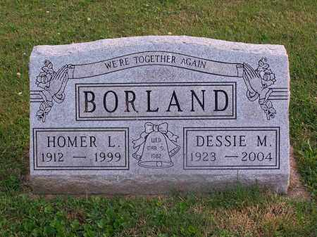 BORLAND, HOMER - Carroll County, Ohio | HOMER BORLAND - Ohio Gravestone Photos
