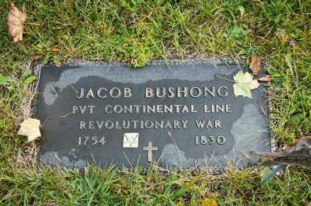 BUSHONG, JACOB - Carroll County, Ohio   JACOB BUSHONG - Ohio Gravestone Photos