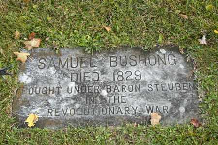 BUSHONG, SAMUEL - Carroll County, Ohio | SAMUEL BUSHONG - Ohio Gravestone Photos