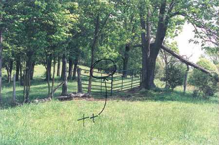 CAPPER, CEMETERY - Carroll County, Ohio   CEMETERY CAPPER - Ohio Gravestone Photos