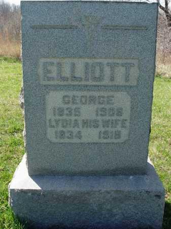 ELLIOTT, LYDIA - Carroll County, Ohio | LYDIA ELLIOTT - Ohio Gravestone Photos