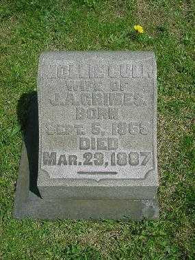 CULP GRIMES, MOLLIE - Carroll County, Ohio | MOLLIE CULP GRIMES - Ohio Gravestone Photos