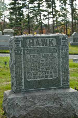 HAWK, CAROLINE J. - Carroll County, Ohio | CAROLINE J. HAWK - Ohio Gravestone Photos
