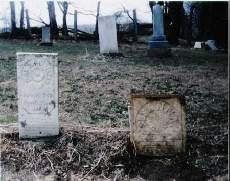 CUSTER HENDRICKS, SUSANNAH - Carroll County, Ohio | SUSANNAH CUSTER HENDRICKS - Ohio Gravestone Photos