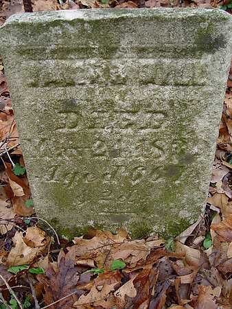 HILL, JAMES - Carroll County, Ohio | JAMES HILL - Ohio Gravestone Photos