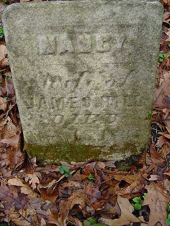 HILL, NANCY - Carroll County, Ohio | NANCY HILL - Ohio Gravestone Photos
