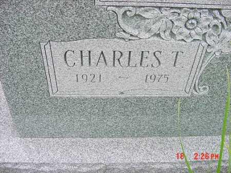 JOHNSON, CHARLES T - Carroll County, Ohio | CHARLES T JOHNSON - Ohio Gravestone Photos