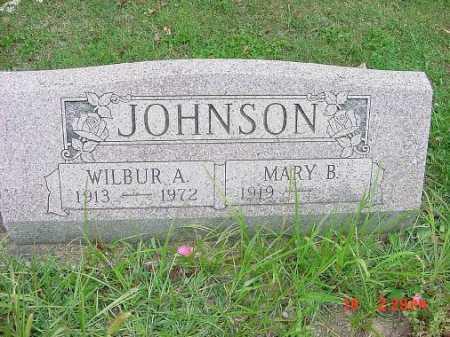 JOHNSON, MARY B. - Carroll County, Ohio | MARY B. JOHNSON - Ohio Gravestone Photos