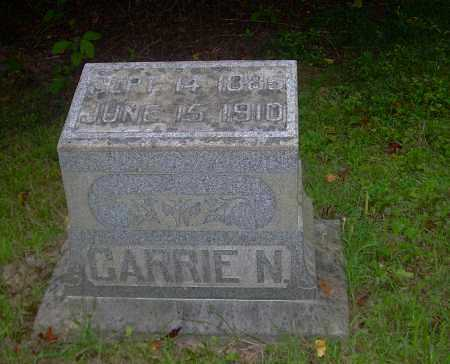 JOHNSTON, CARRIE - Carroll County, Ohio | CARRIE JOHNSTON - Ohio Gravestone Photos