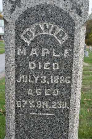 MAPLE, DAVID - Carroll County, Ohio | DAVID MAPLE - Ohio Gravestone Photos