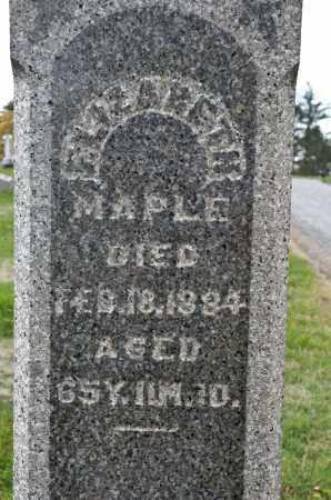 MAPLE, ELIZABETH - Carroll County, Ohio | ELIZABETH MAPLE - Ohio Gravestone Photos